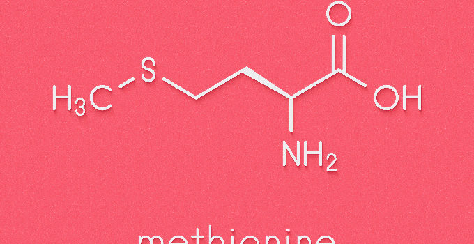 L-Methionine For Male Enhancement